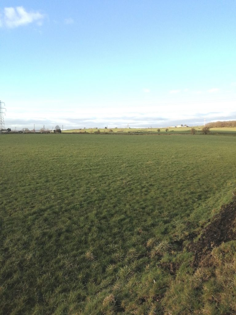 Beautiful Thornhills in February