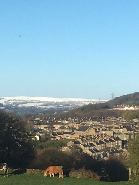 Snow on the lower Pennines from Thornhills